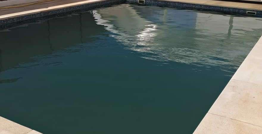 algas en al agua de la piscina