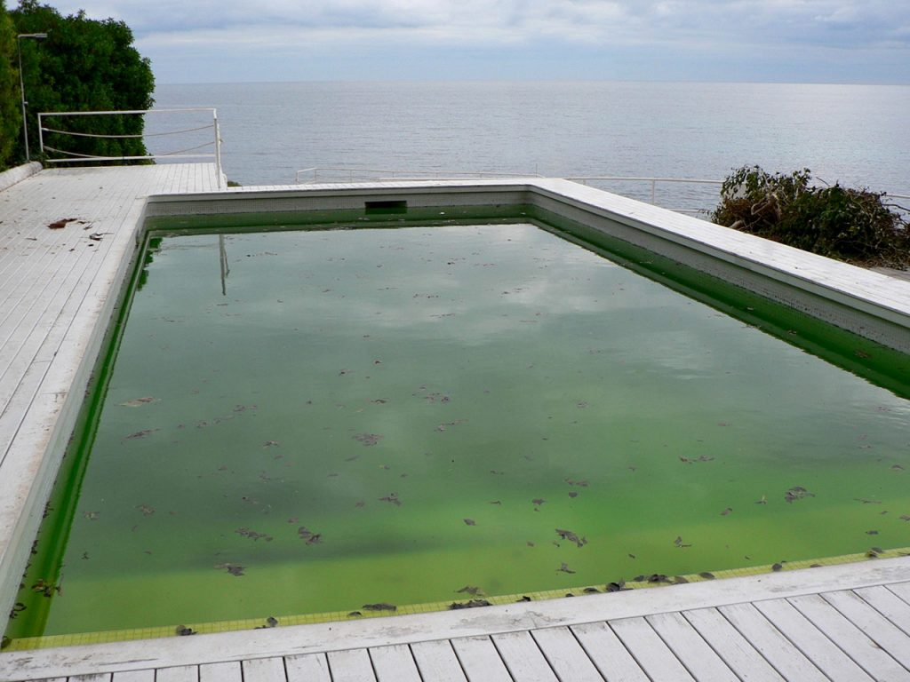 piscina verde antes de comenzar la temporada