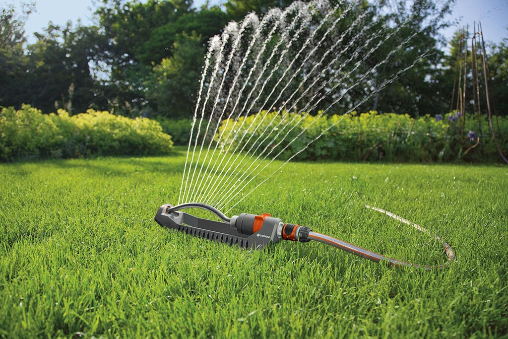 Claves para cuidar tu jardín en verano 1